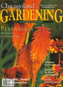 red-hot-poker-flowers-mishs-garden