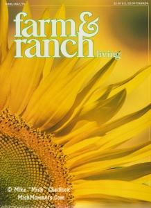 sunflowers-door-county-wisconsin