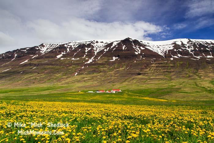 skagafjordur-north-iceland-23